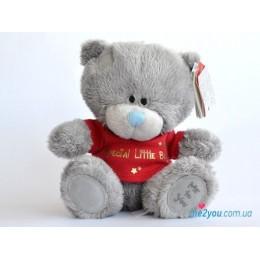 Мишка Тедди Special little boy (G92W0047)