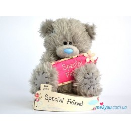 Мишка Me to you Special friend (G01W1675)