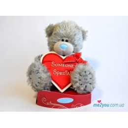 Мишка Тедди с сердцем-плакатом Someone special (G01W2042)