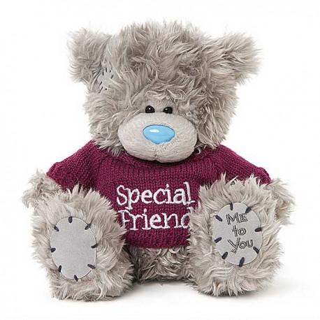 Мишка Тедди в кофточке с надписью Special friend 18 см (G01W3752)