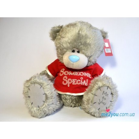 Мишка Тедди в футболке Someone special (G01W2051)